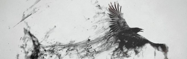 cropped-artwork_crows_1920x1080_wallpa_2560x1440_animalhi-com1.jpg