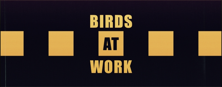 The Corvid Review - Birds At Work - pYYgcv9